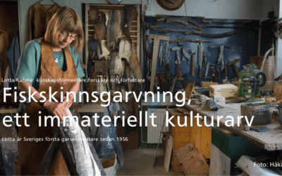 Kurs Fiskskinnsgarvning, ett immateriellt kulturarv
